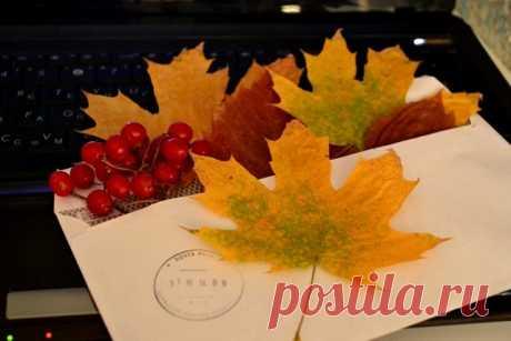 Я пришлю тебе осень в обычном почтовом конверте, Без дождей и туманов, без сырости, горя и слёз. Я вложу в него щедро осенней листвы разноцветье. Только ты постарайся принять мой подарок всерьёз. Улыбнись и подумай: «Какая красивая осень, Сколько света и красок, как гроздья рябин хороши…» Отпусти всё плохое, вздохни без обиды и злости, И приняв неизбежность, почувствуй, как хочется жить, Наслаждаться покоем, дышать этим воздухом влажным, Ощущать в листопаде прощания легку...