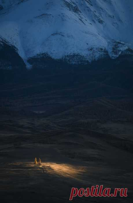 «Луч солнца золото-о-го...» Фотограф – Евгений Анатольевич: nat-geo.ru/community/user/185991/