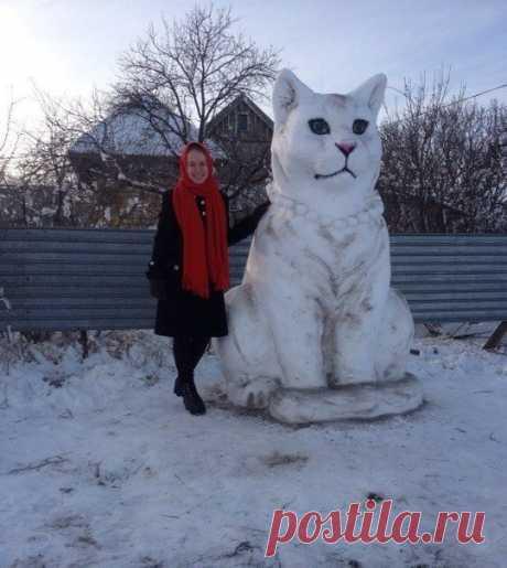 Снежный котик 😺