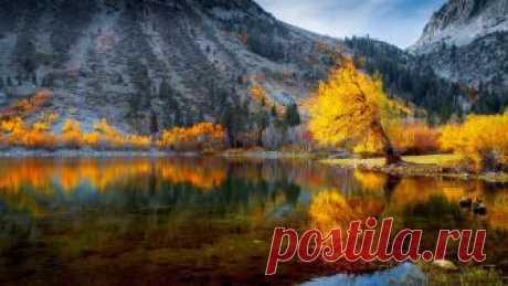 Autumn Panorama   Lundy Lake, California   Ken Yaecker   Flickr