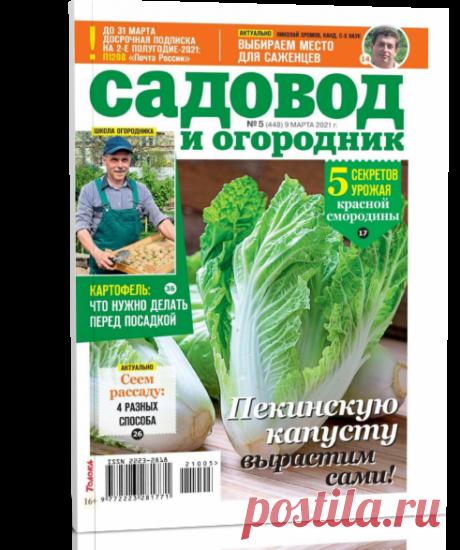 Читать журнал Садовод и огородник №5 2021 бесплатно - полная версия.