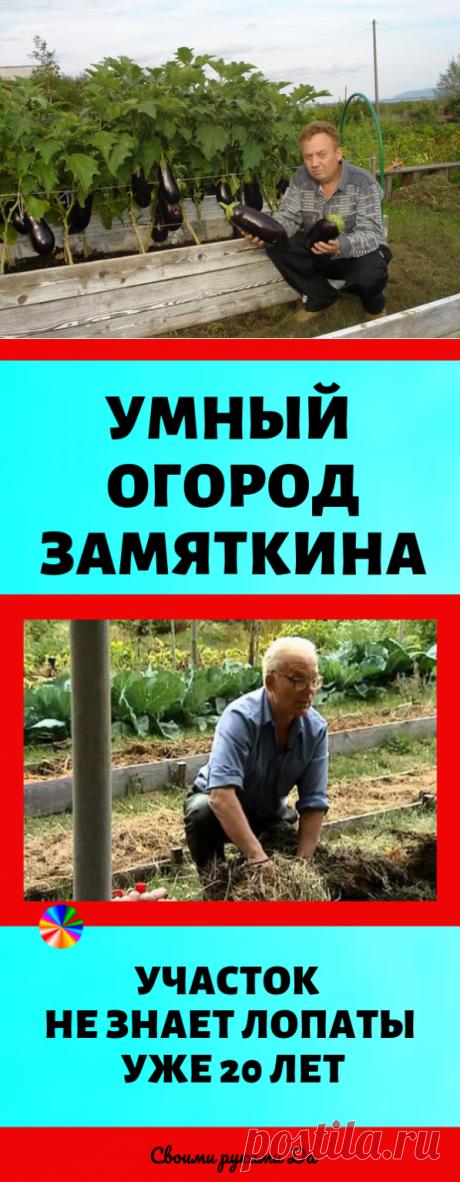СУПЕР НУЖНЫЕ СОВЕТЫ ДЛЯ ДАЧНИКОВ!