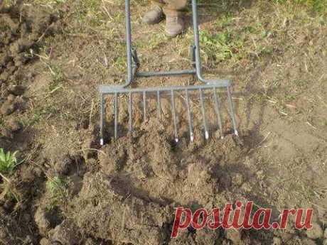 Как подготовить почву к зиме Плодородность почвы весной полностью зависит от того, как вы подготовили ее осенью. Для чего нужна и когда используется перекопка почвы. Почему рыхление так важно для ее структуры и какие удобрения использовать.
