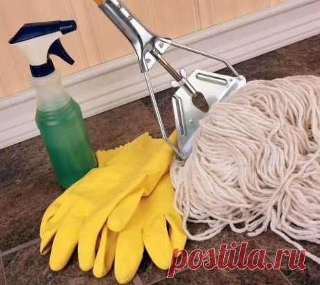 Чтобы дом блестел! Дельные советы по уборке - Образованная Сова