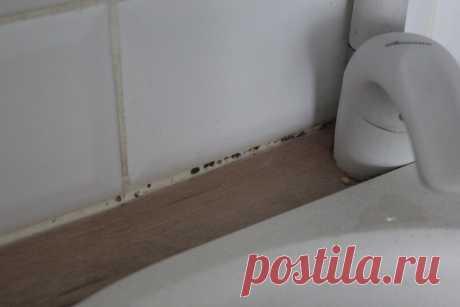 7 признаков того, что в квартире пора делать генеральную уборку | Советы по дому