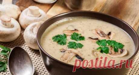Как приготовить сливочный суп с грибами в домашних условиях