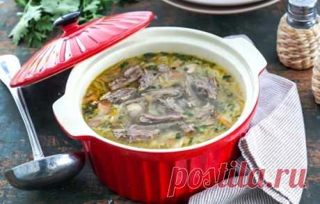 Рецепты щей из свежей капусты с говядиной: секреты выбора
