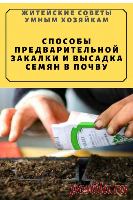 Способы предварительной закалки и высадка семян в почву | Житейские Советы