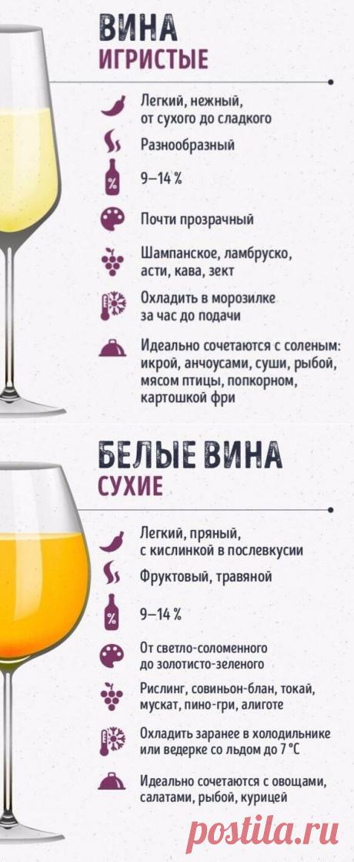 Шпаргалки для тех, кто любит вино — Кулинарная книга - рецепты с фото
