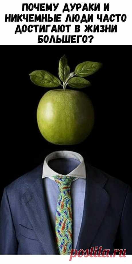 Почему дураки и никчемные люди часто достигают в жизни большего? - Упражнения и похудение