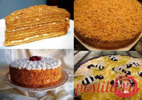 Медовые торты » Кулинарный клуб HAPPYCOOK. Кулинарные рецепты с фотографиями, кулинария, готовим дома