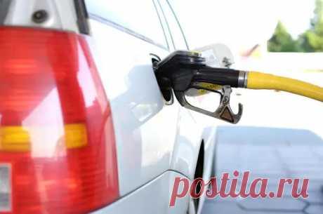 Кровь вашего авто: 10 полезных лайфхаков для экономии бензина - Автоблоги - медиаплатформа МирТесен