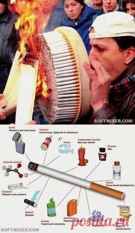 Шесть убедительных заблуждений о курении   SOFTMIXER