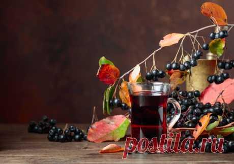 Как использовать ягоды черноплодной рябины - prosad.ru