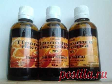 WHY PROPOLIS - THE BEST ALL DISEASES MEDICINE
