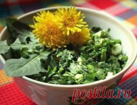 Recipes from weeds from professor Tatyana Kiselyovoy \u000d\u000aRecipes from weeds from professor Tatyana Kiselyovoy\u000d\u000aThe weeds of which gardeners furiously get rid normalize a metabolism, including reduce sugar level in blood. And it is the major ant …