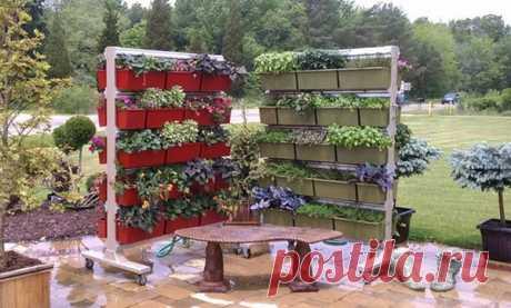 Большие хитрости для маленького огорода: дополнительное пространство и экономия площади | Первый дачный | Яндекс Дзен