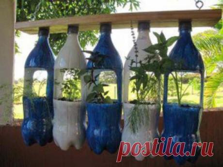 25 идей из пластиковых бутылок