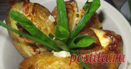 Картофель «Фрайт» новое открытие в кулинарии