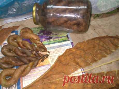 Табак домашний , приготовление трубочного табака , скрутка листа в твисты .