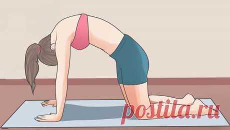 Растяжка для спины: основные упражнения