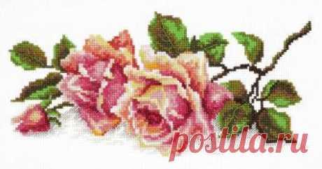 """Скачать схему вышивки """"Чудесная игла"""" 40-48 «Аромат розы»"""