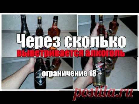 Через сколько выветривается алкоголь из организма? Видео версия. Просто о сложном.