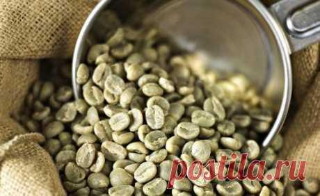Зеленый кофе для похудения: факты и мнения специалистов   ВитаПортал - Здоровье и Медицина