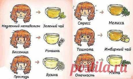 В любой непонятной ситуации пей чай! Добавь себе