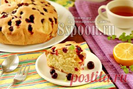 Бисквитный пирог с черной смородиной, рецепт с фото