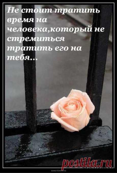 Ни один человек не может стать более чужим, чем тот, кого ты в прошлом любил... (Є.М.Ремарк)