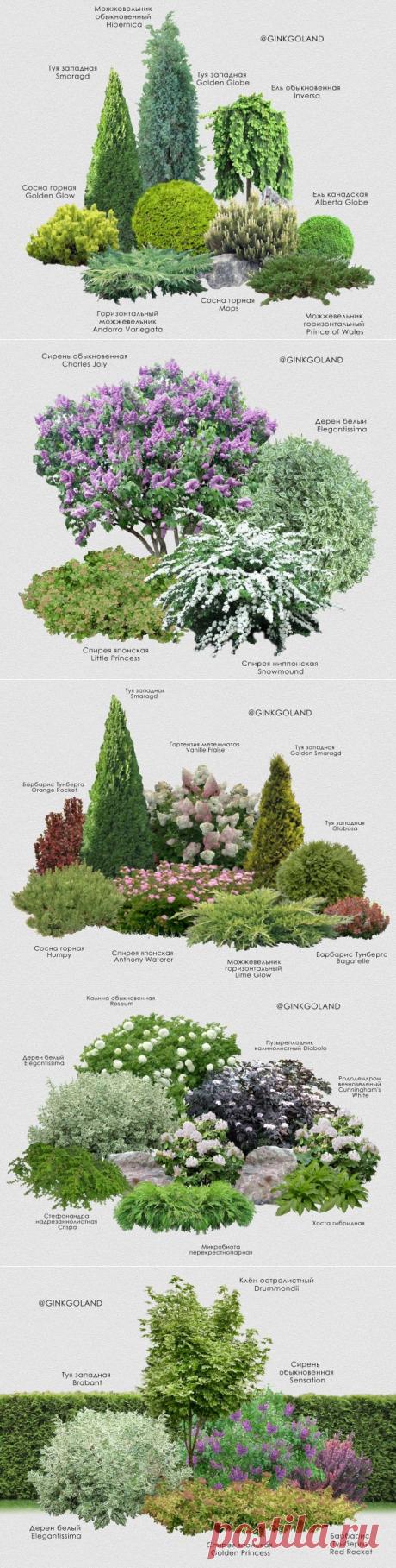 Ландшафтный дизайн только с любовью – 8 идей садовых композиций | Идеи дизайна (Огород.ru)