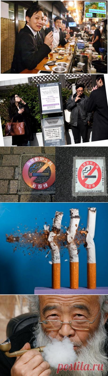 """Отношение японцев к курению. И их реакция на новый закон """"О курении""""?"""