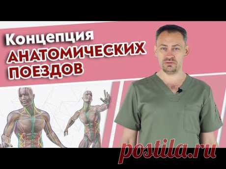Самая важная книга для массажиста! / Томас Майерс Анатомические поезда - YouTube