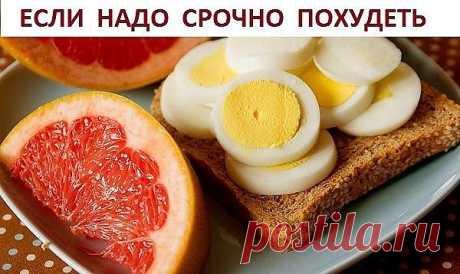 Яичная диета — Золотые рецепты
