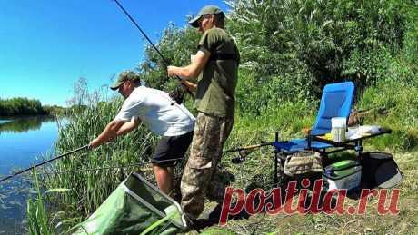 Неписаные правила рыбацкого этикета, которые должен соблюдать каждый рыболов   Рекомендательная система Пульс Mail.ru
