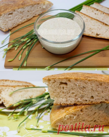 Вечная закваска для хлеба и выпечки без дрожжей. Рецепт с пошаговыми фото от Екатерины Витиной   Все Блюда
