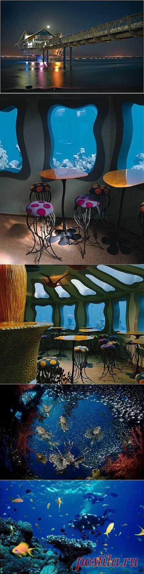 Ресторан на дне Красного моря / Туристический спутник