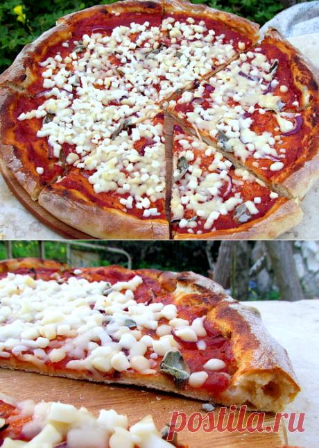 Тесто для пиццы на пшеничной закваске Кена Форкиша - unseens — ЖЖ