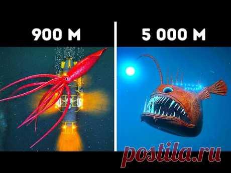 3D-путешествие к неизведанному, что кроется в глубинах океана - YouTube