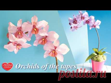 Орхидея из Ленты . Подарочный горшочек / Orchids of the tapes