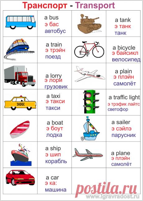 Transport.png (745×1045)
