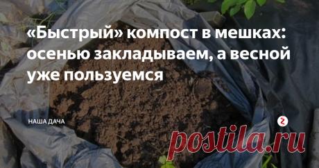 «Быстрый» компост в мешках: осенью закладываем, а весной уже пользуемся Естественным образом компост зреет год, а то и больше – именно столько времени нужно бактериям, чтобы успеть переработать все растительные и пищевые остатки. Ждать так долго многие дачники просто не могут – компост нужен быстро. Есть отличный способ заготовки компоста в больших мешках для мусора – если заложить его осенью, то весной, перед посадкой, он будет уже вполне пригодным для употребления.