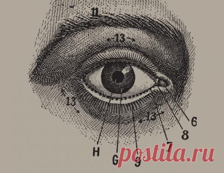 Esta técnica simple para los ojos — la profiláctica excelente del glaucoma y