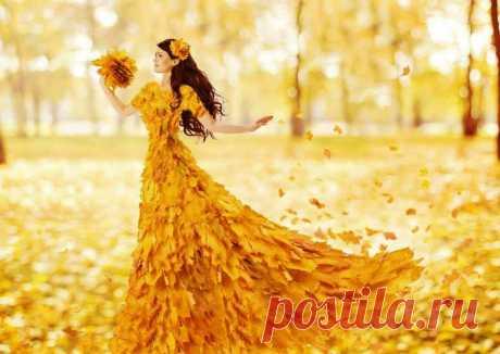 Плейкаст «Осенние цветы»
