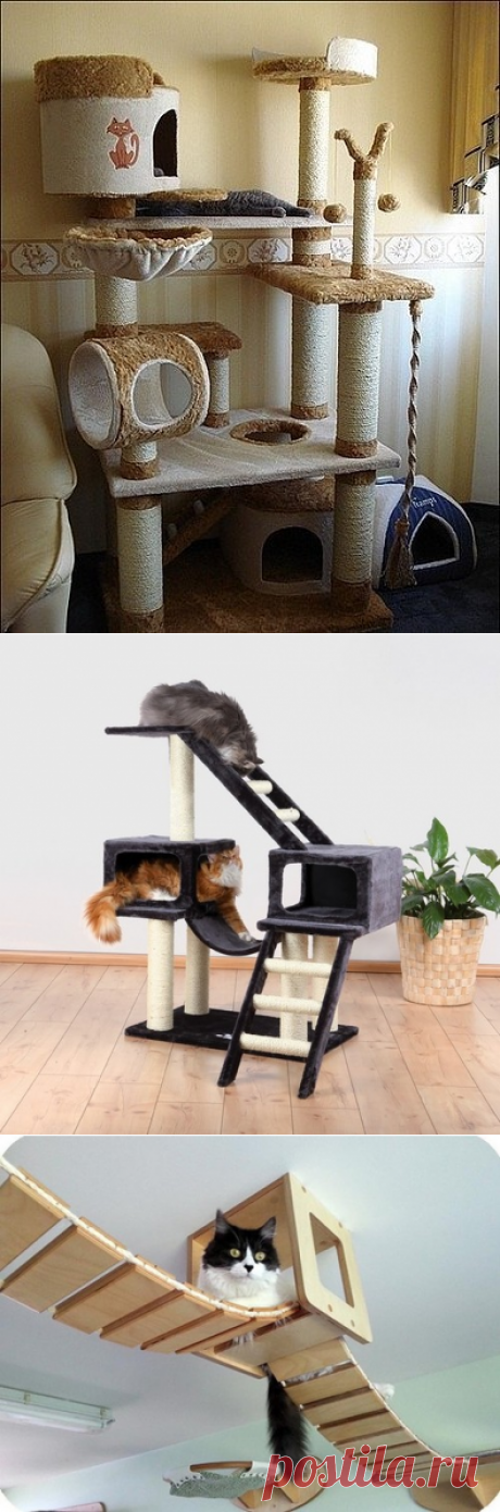 Игровые комплексы для кошек в интерьере квартиры » DataLife Engine