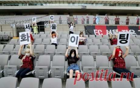 Корейский футбольный клуб заменил зрителей на трибунах секс-куклами Мотивирует.