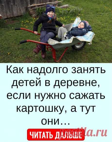 Как надолго занять детей в деревне, если нужно сажать картошку, а тут они…