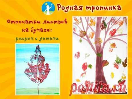 Отпечатки листьев на бумаге Отпечатки листьев на бумаге: рисуем с детьми. Пошаговое описание нетрадиционной техники рисования отпечатками листьев. Примеры и идеи для детских рисунков.