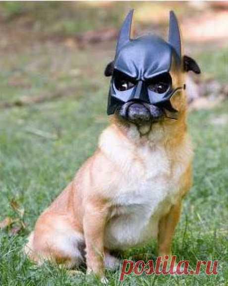 бэтмен)